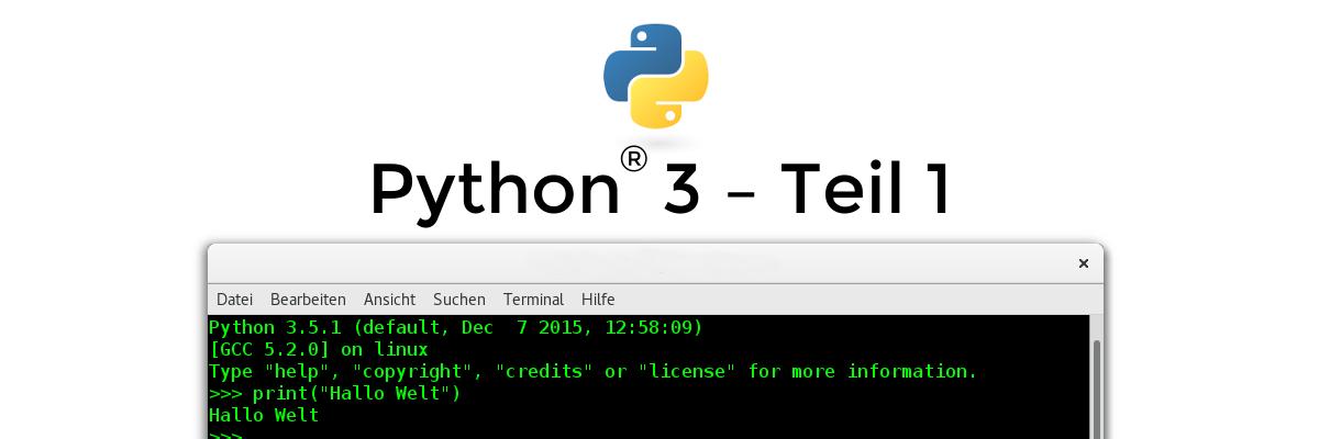 Python 3 – Nur eine Schlange? – Teil 1