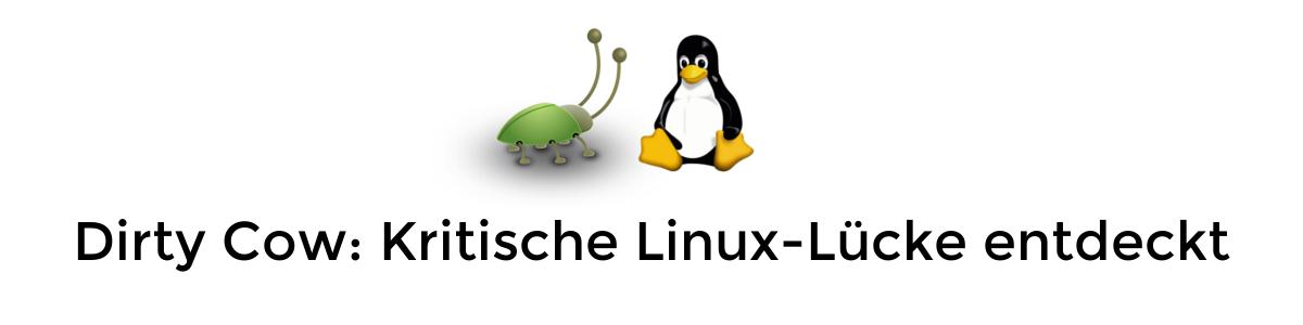 Dirty Cow: Kritische Sicherheitslücke im Linux-Kernel